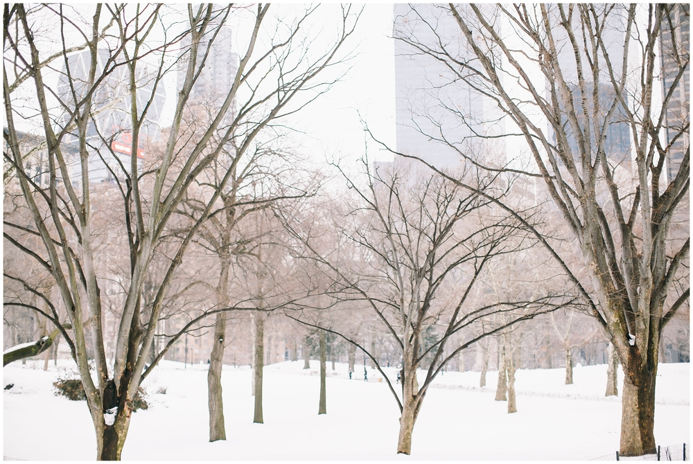 New York_FIONA CLAIR PHOTOGRAPHY-27.jpg