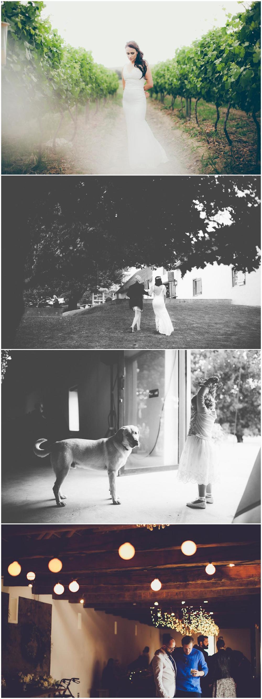 Ruan&Gina_TheOaks_FionaClairPhotography-155.jpg