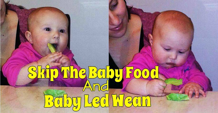 Click the picture to get to our Baby Led Weaning Article.