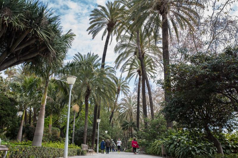 An enjoyable morning in El Paseo del Parque Un avant-midi agréable dans El Paseo del Parque