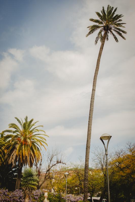 Sevilla_ArielTarr-32.jpg