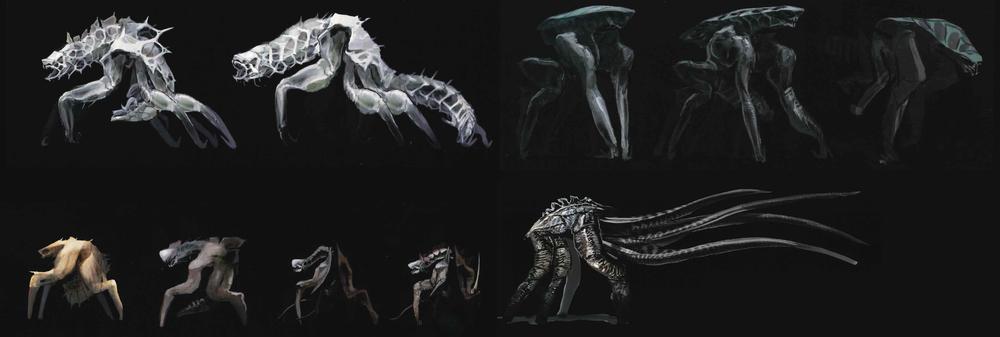 Evolución de los Mutos.