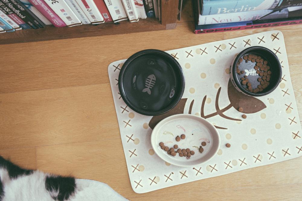 cats_food.jpg
