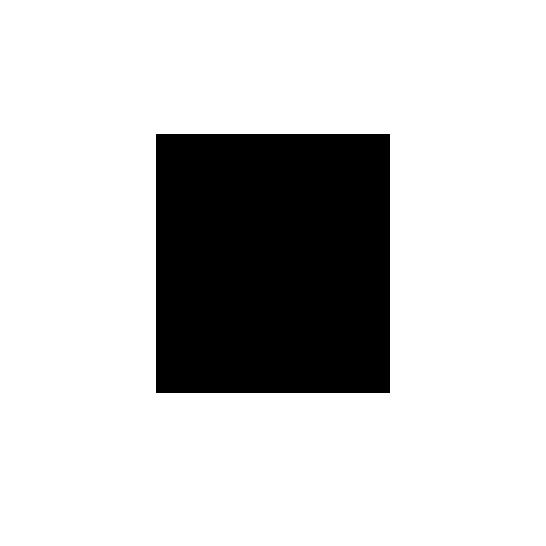 Logo VA.png