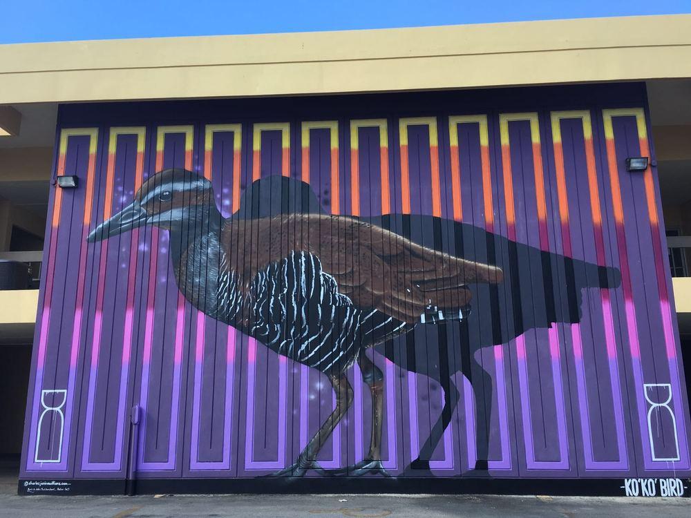 Ko'ko' bird painting by New Zealand artists Charles and Janine Williams