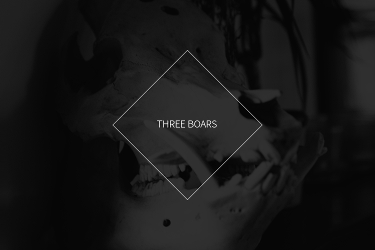 Threeboars-Title-Blog.jpg