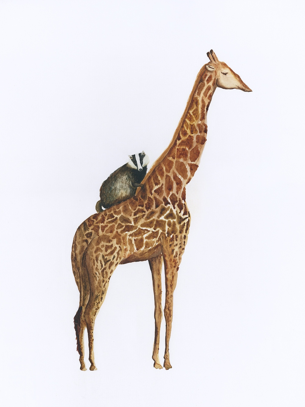 the badger and the giraffe.jpg
