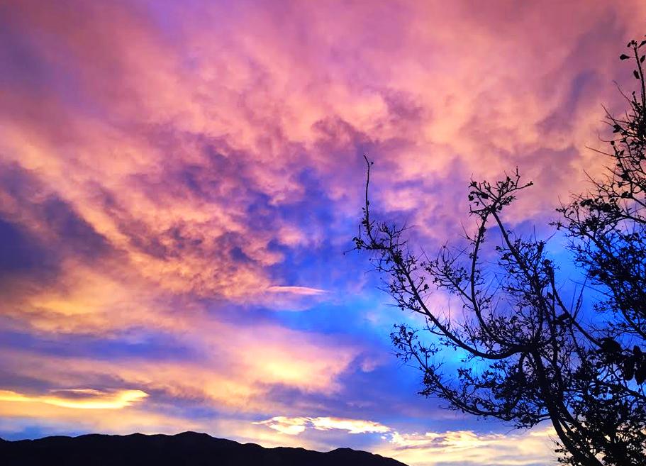 NEW sky.jpg