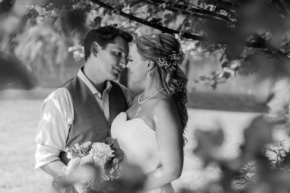 Stefy Hilmer Photography- bride and groom kissing.jpg