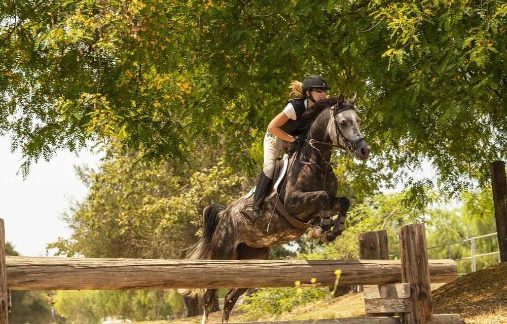 RiderField_timberJump01.jpg