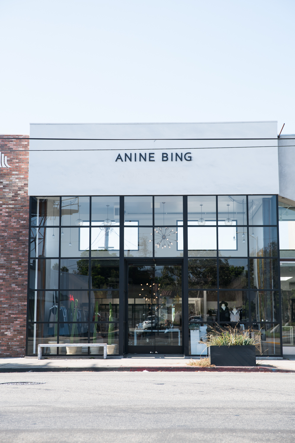 anine bing store-4.png