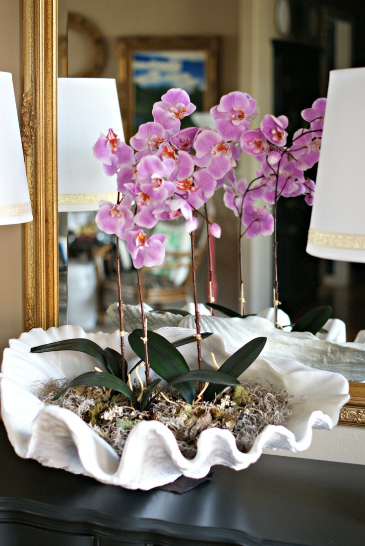 Weekend decorating idea orchid shell arrangement the for Orchid decor