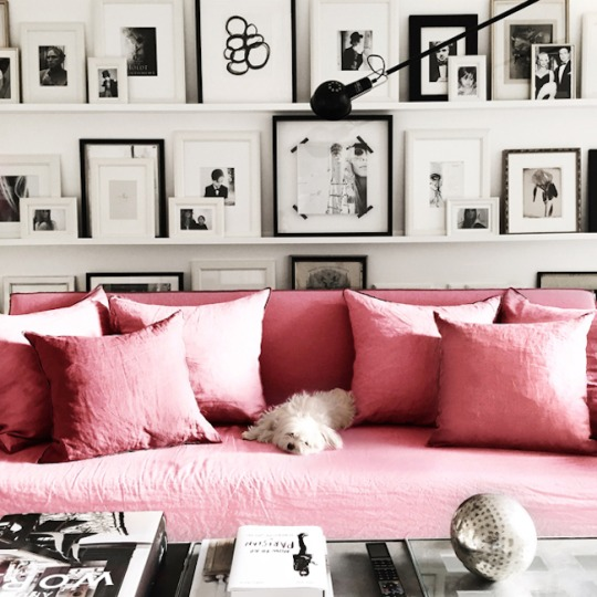 Jan 21, 2015 Interior Design Black And White, Living Rooms, Pink, Color  Lover, Pink And Grey Ashlina Kaposta Comment Part 88