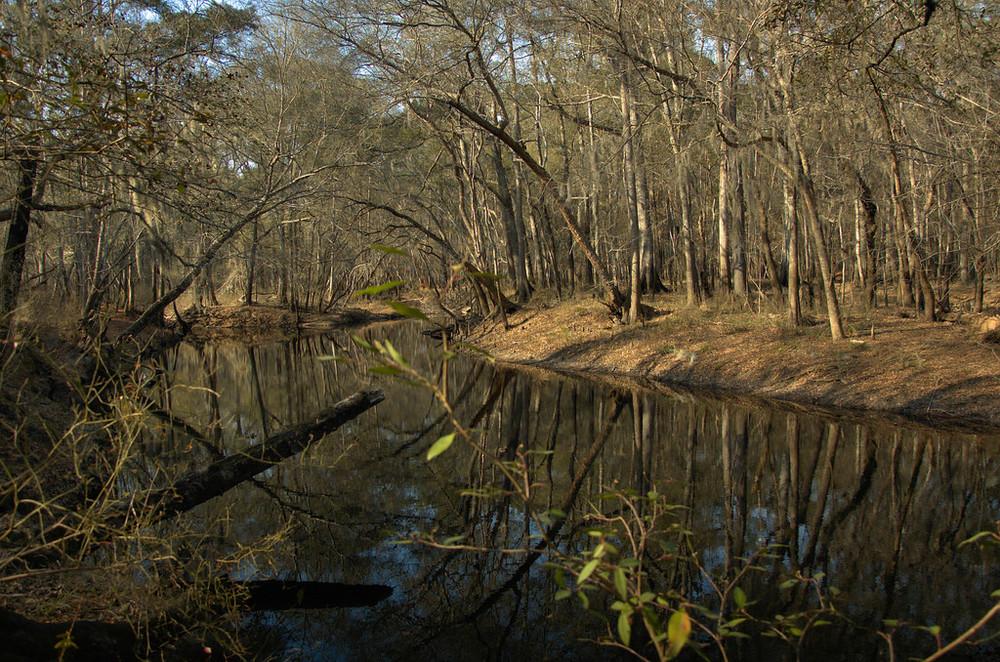 Canoochee River, Evans County, Ga