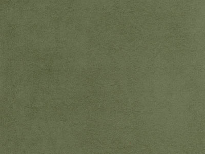 EcoSuede - Moss