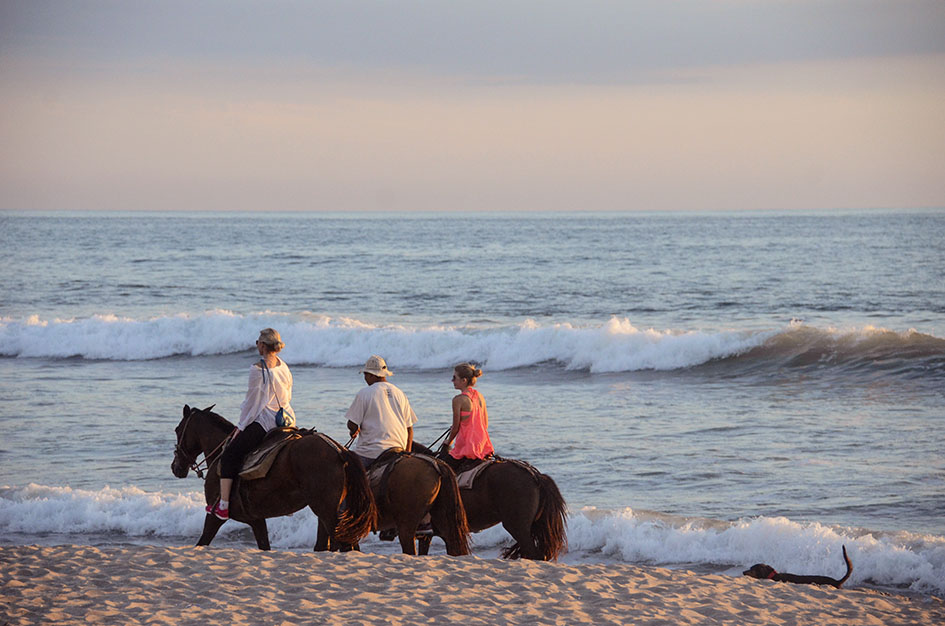 Santa Teresa Horsebackriding