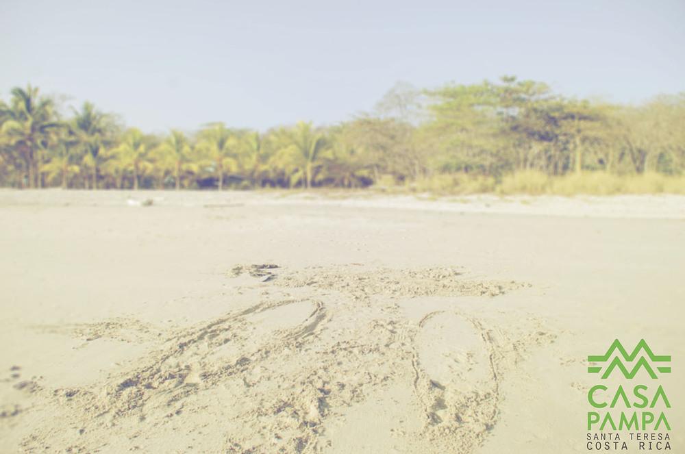 9-surf lesson-santa teresa costa rica-casapampa.JPG
