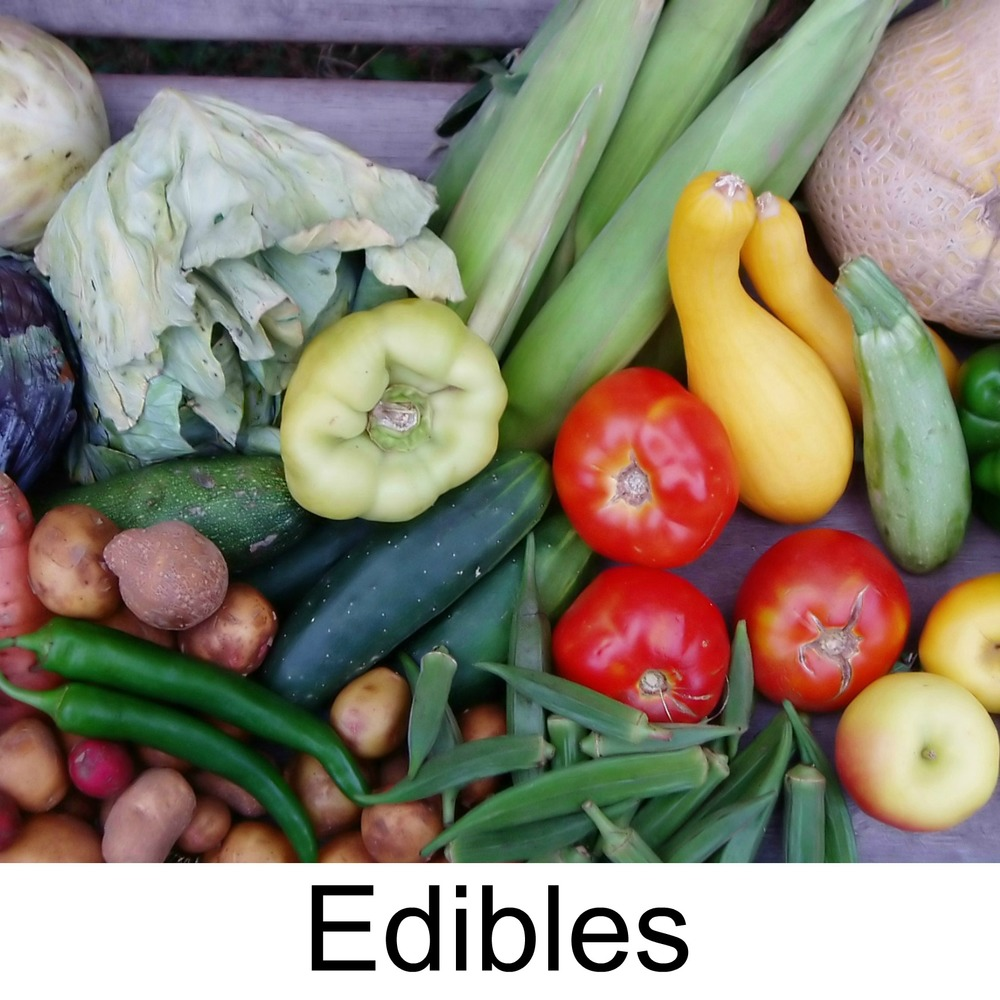 edibles3.jpg