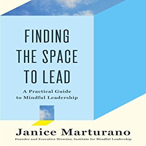 Finding The Space To Lead,  Janice Marturano