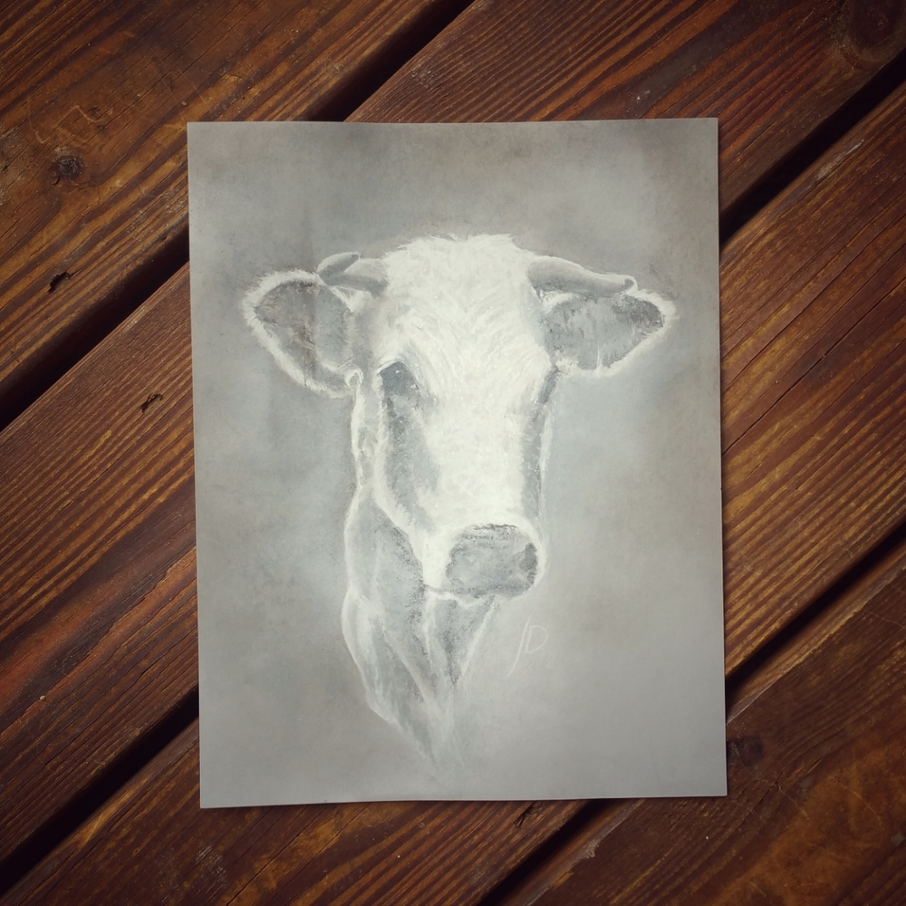 Just doing a little experimenting with some brighter values. Moo.