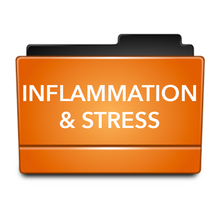 INFLAMMATION AND STRESS.png