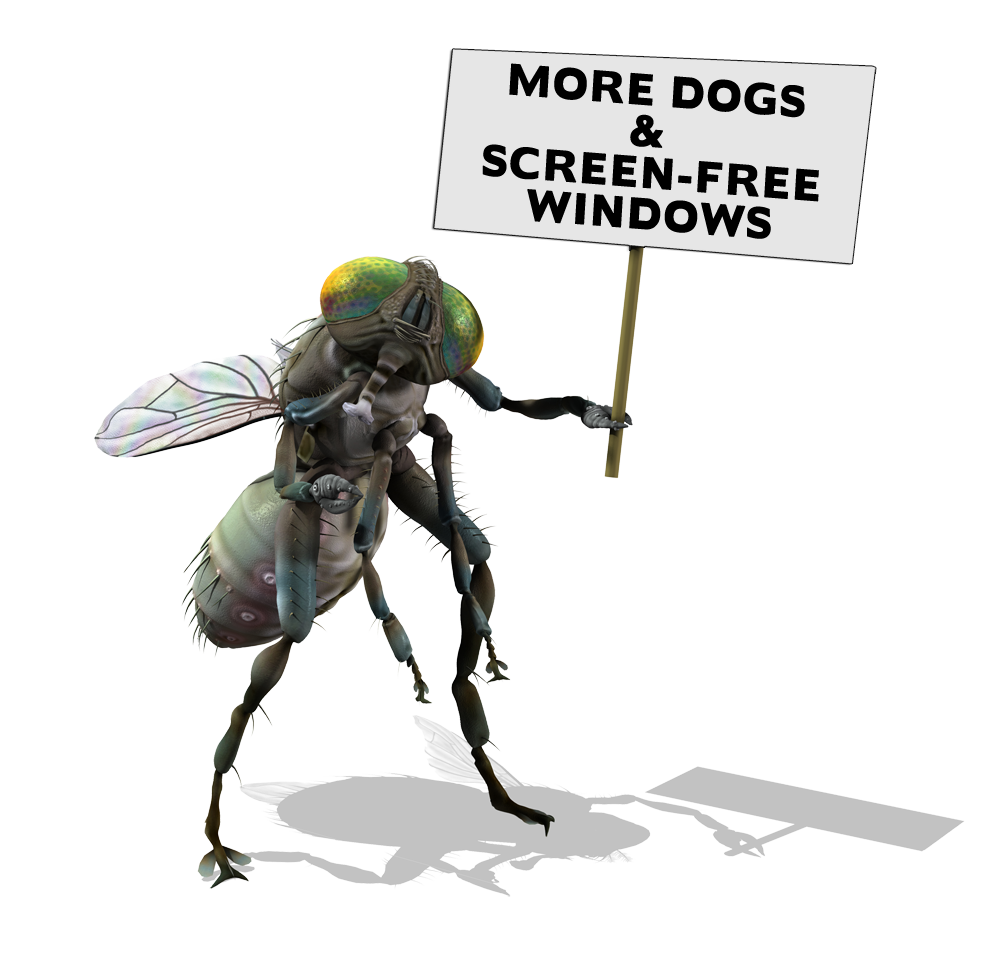 fly_sign.png