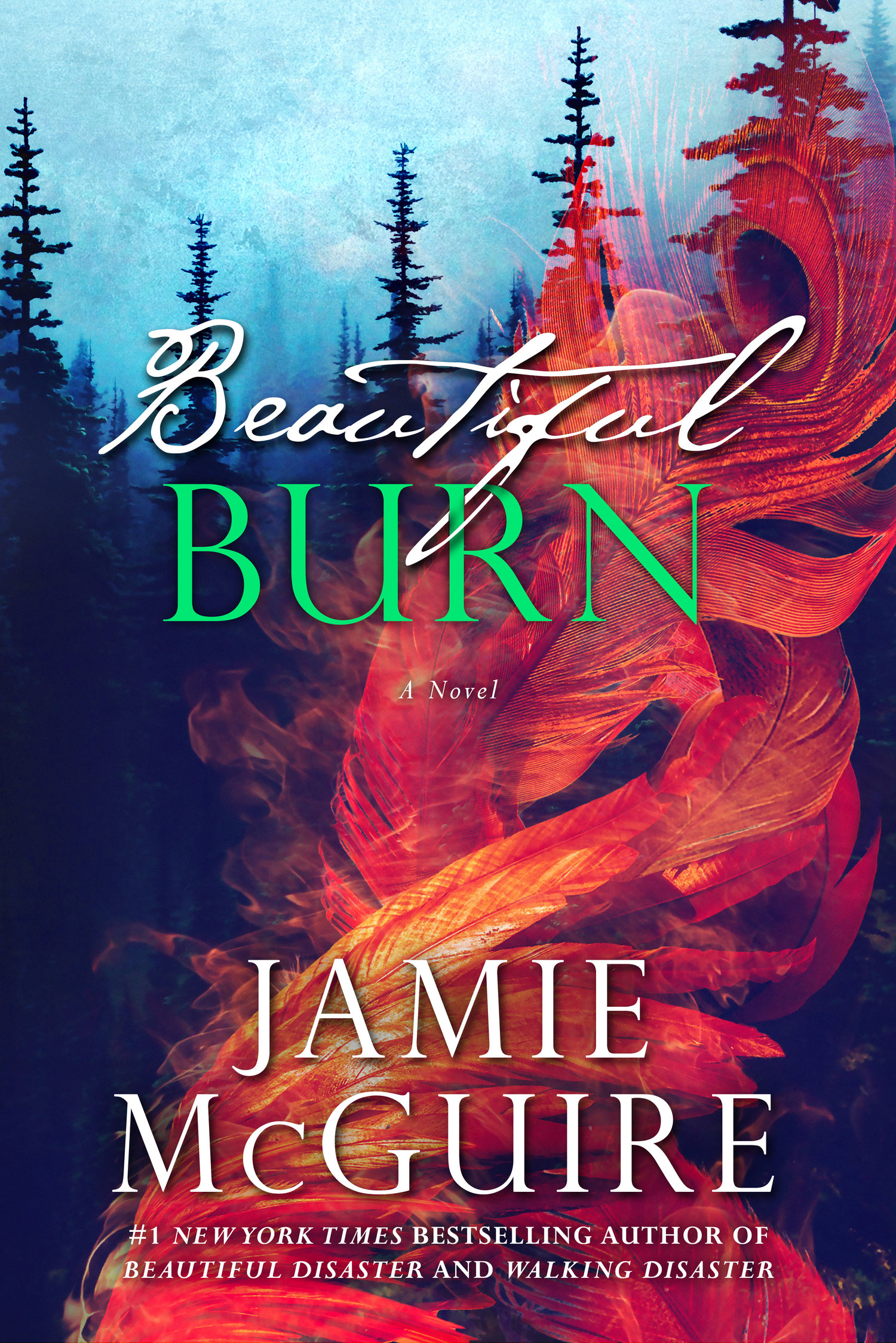 Beautiful Darkness Book Cover ~ Beautiful series faq u2014 author jamie mcguire