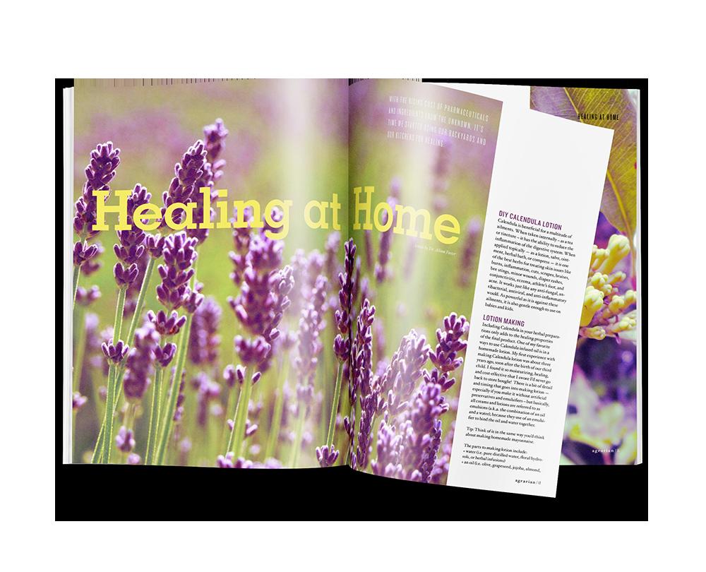print_0002s_0002_magazine3.png