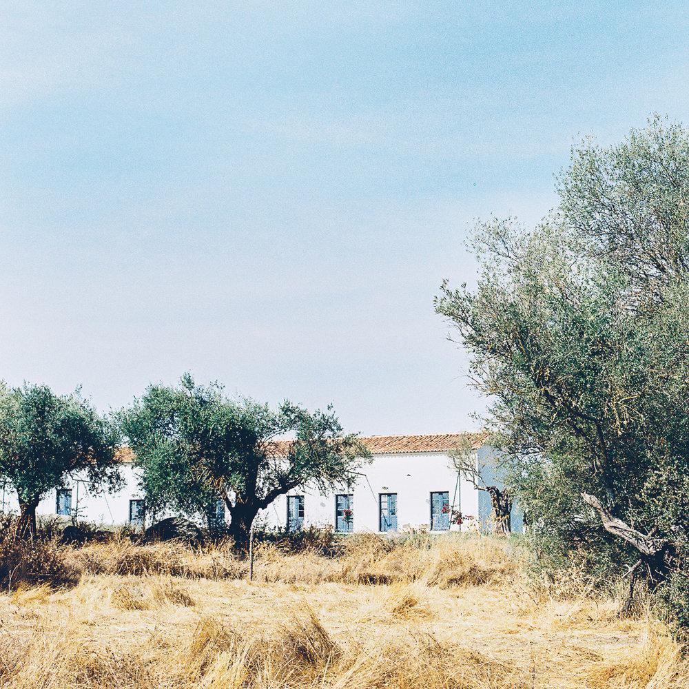 portugal retreat with Olaiya Land of millys-kitchen.com