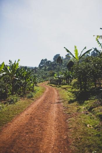 Uganda_Nine229.jpg