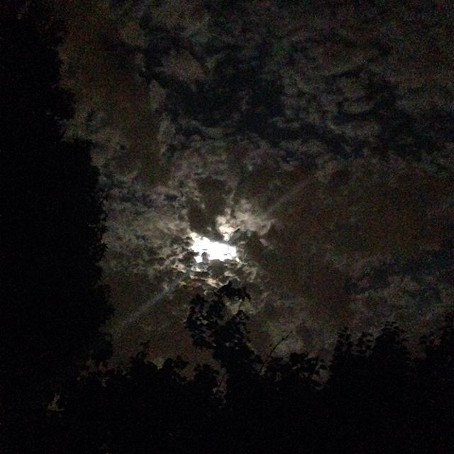 #Goodnight #Gorgeous #Moon