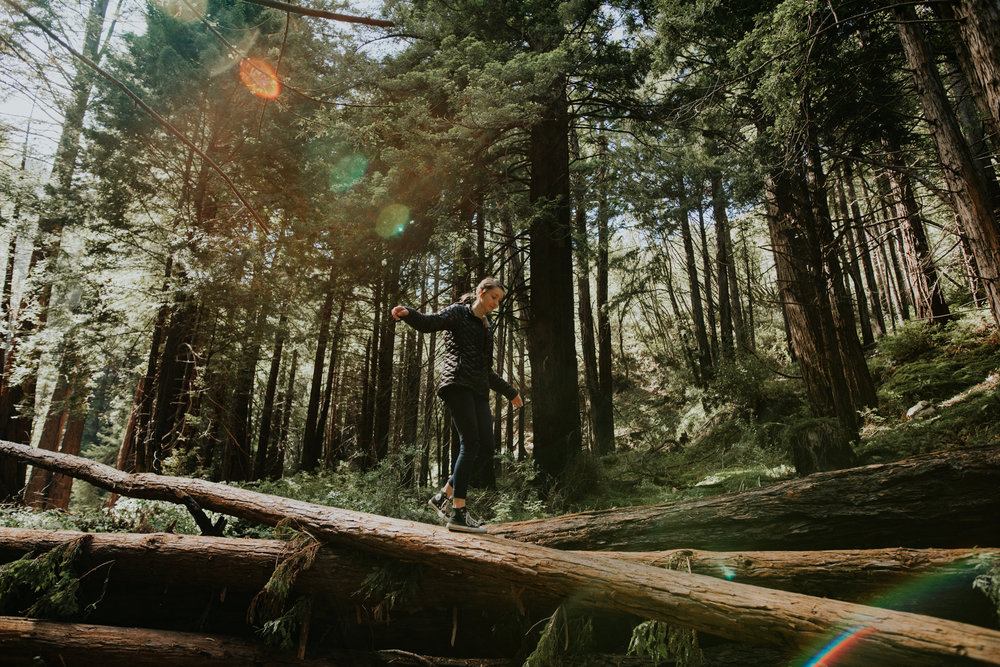 Limekiln State Park - Big Sur Elopement Photographer - Vow of the Wild