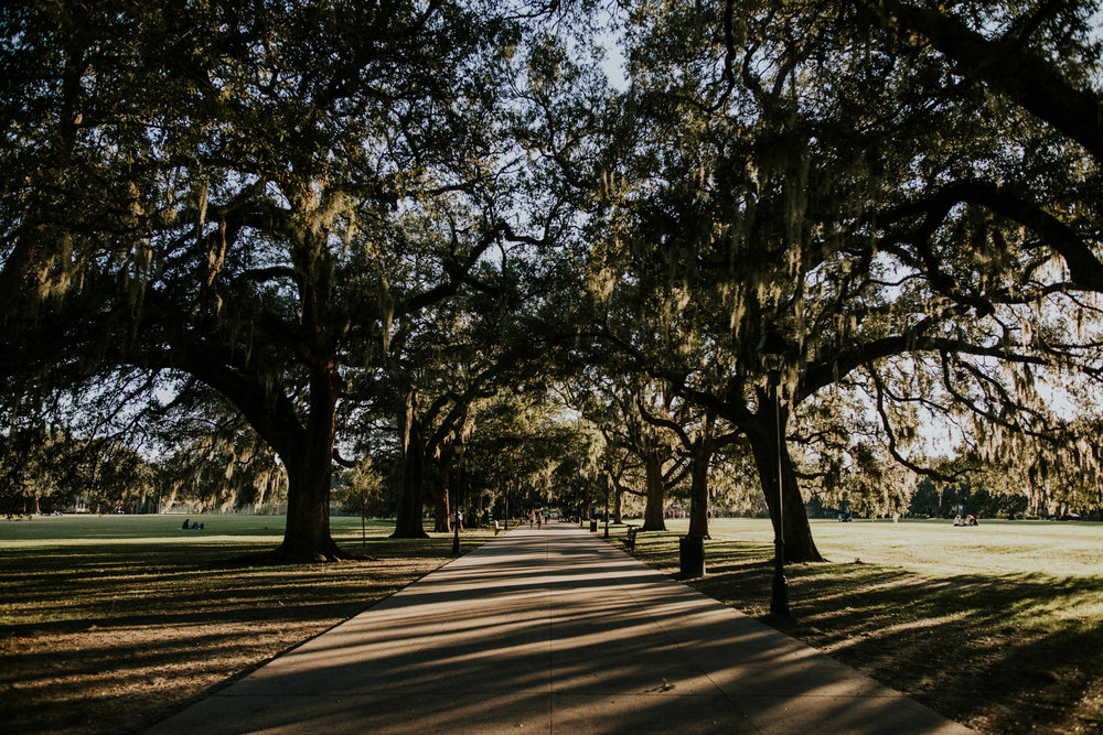 Forsyth Park - Savannah Georgia Travel - Destination Elopement Photographer - Vow of the Wild
