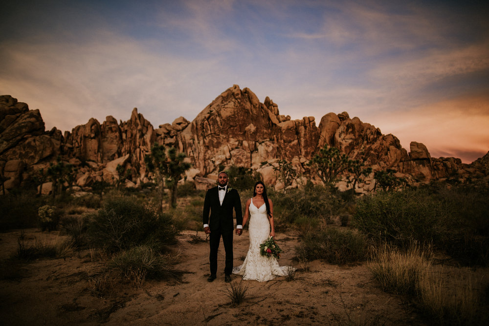 Joshua Tree National Park, California Elopement Photo + Video | Sneak Peek