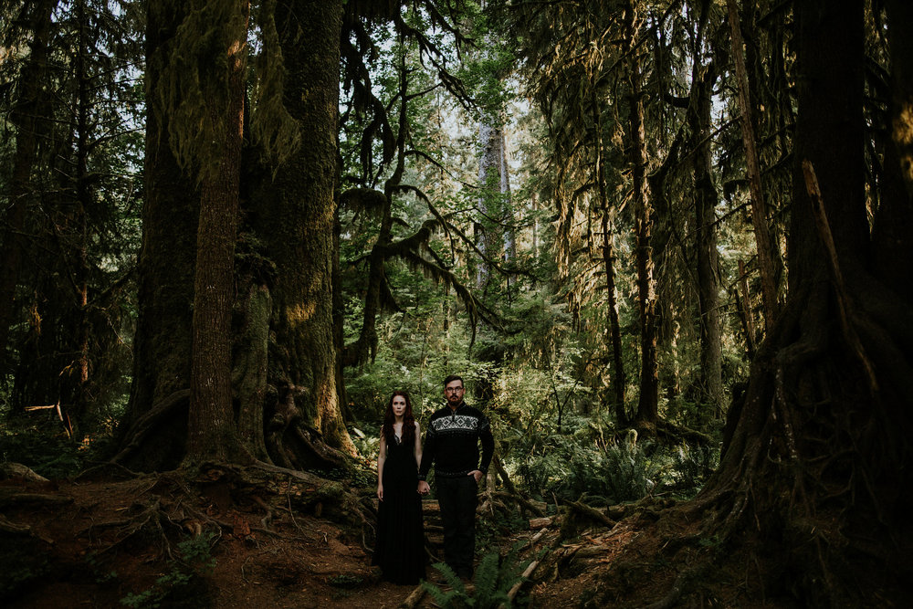 Elisa + Jake | Olympic National Park Elopement Photo + Video | Click to read their story