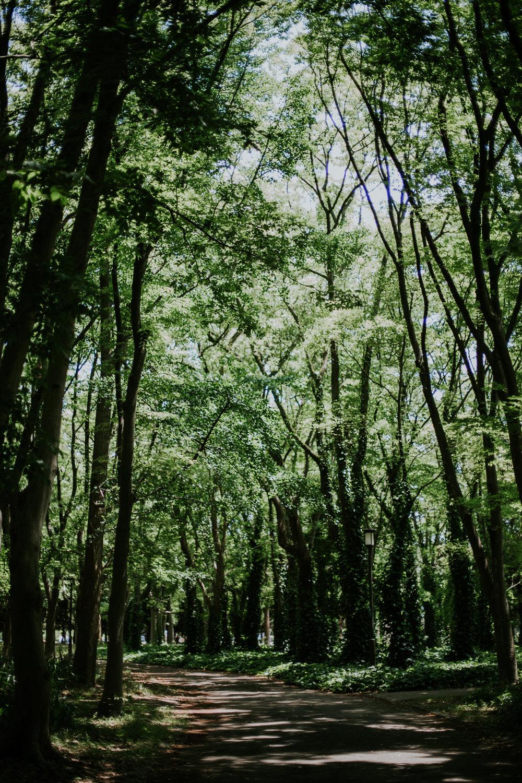Osaka, Japan | Destination Elopement Photographer | Vow of the Wild