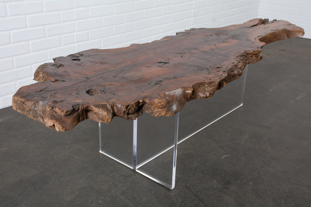 Wood Slab and Lucite Coffee Table