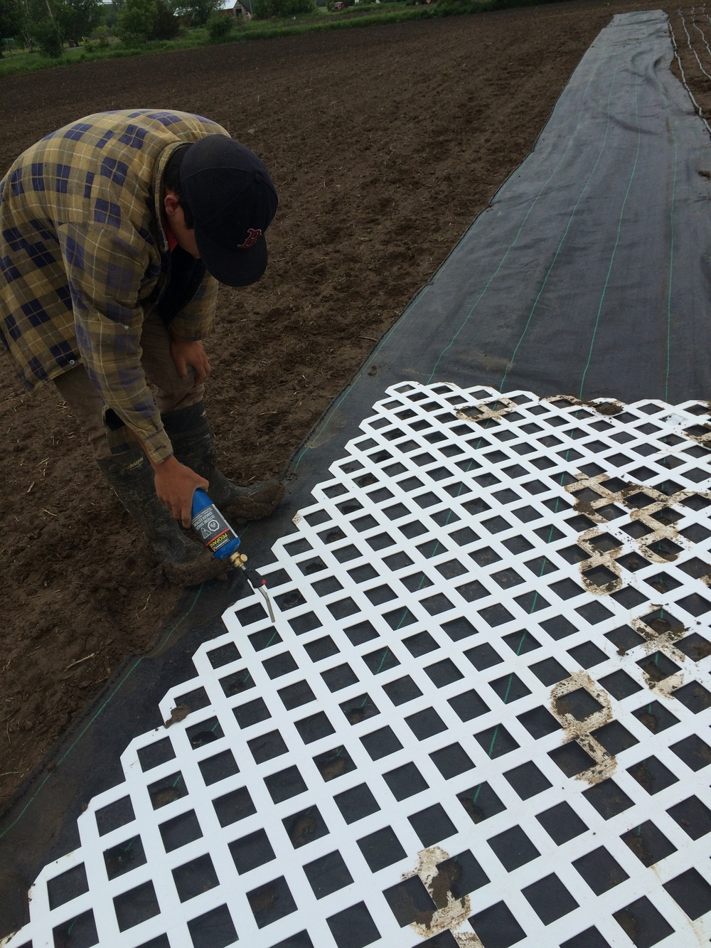Jeremie prepping landscape fabric