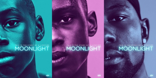 http://www.impawards.com/2016/moonlight.html