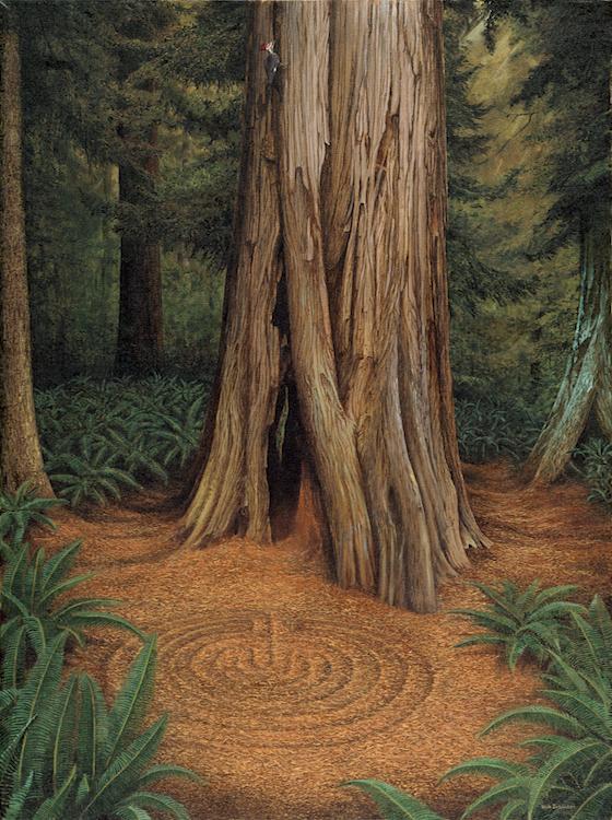 Ancient Cedar750.jpg
