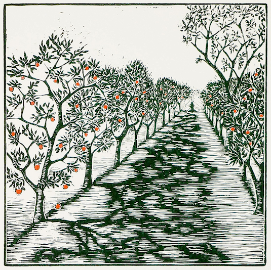 Afternoon in the Orchard  linoleum block print