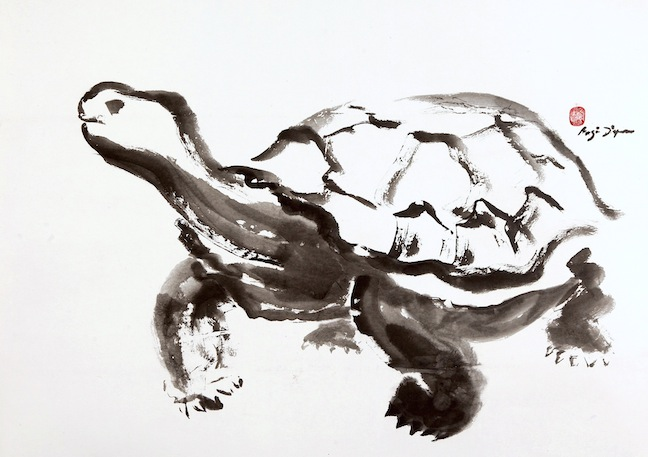 Galapagos Tortoise    sumi ink on paper    $1,400