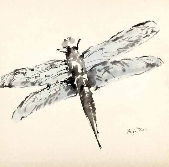 Blue Dragonfly     sumi ink on paper     $1,200