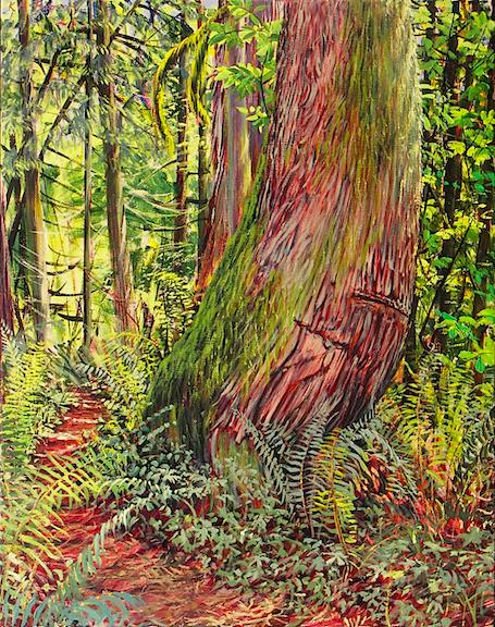 Path by a Cedar.jpg