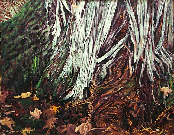 Cedar Root.jpg