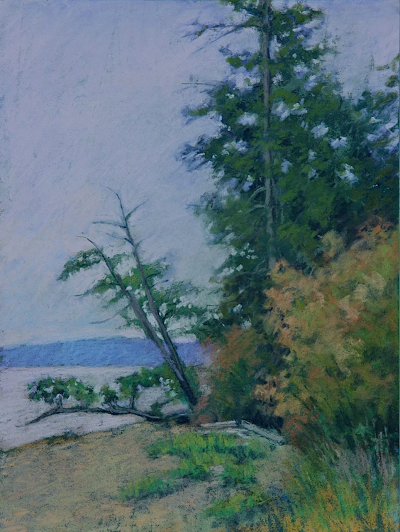 "Madrona Views   pastel   9 x 12""  $750"