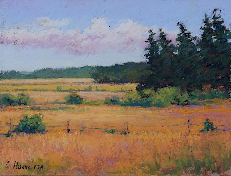 "San Juan Fields pastel 9 x 12"" $750"