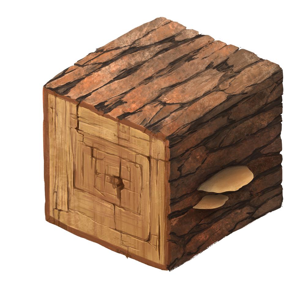 Cube1_Wood.jpg