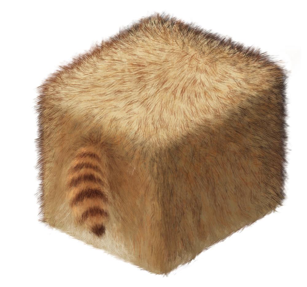 Cube3_RacoonFur copy.jpg