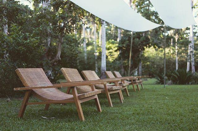Bask in endless greenery and fresh air 🌴🍃🌿 // Siama backyard